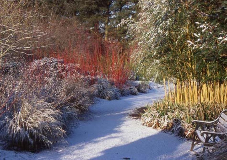 I di inverno e giardino immagini d 39 ispirazione per - Giardini d inverno immagini ...