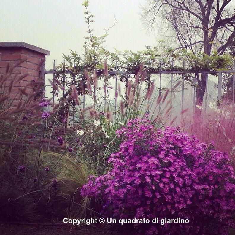 Progettiamo il tuo giardino o terrazzo anche online e lo for Progettare giardini online