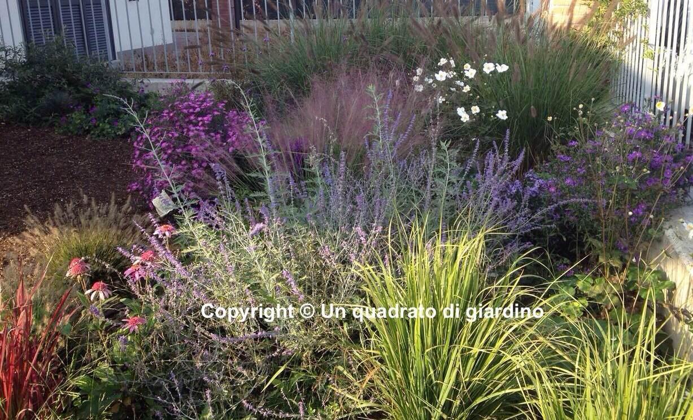 Progettiamo il tuo giardino o terrazzo anche online e lo for Piccoli giardini