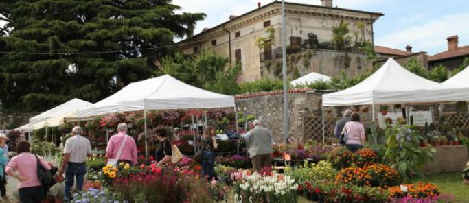 Franciacorta in fiore 2018 for Mostre mercato fiori 2017
