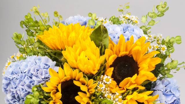 bouquet_sposa_girasoli_ortensie