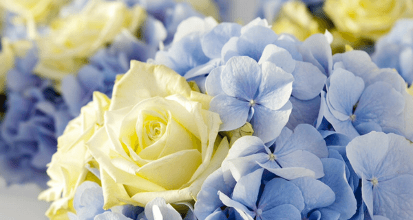 fiori_e_addobbi_floreali_matrimonio_milano_00037