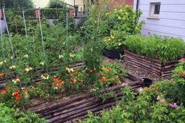 idee_bordure_e_recinzioni_fai_da_te_per_giardini_00023