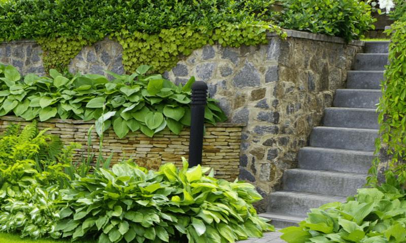 progettazione-creazione-giardini_00013