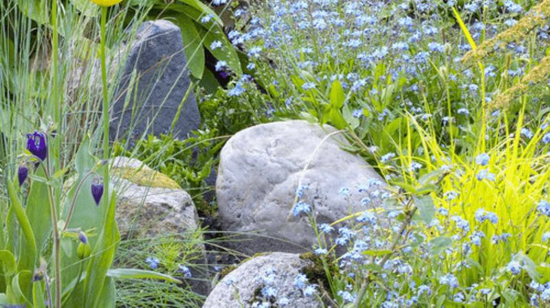 progettazione-creazione-giardini_00014