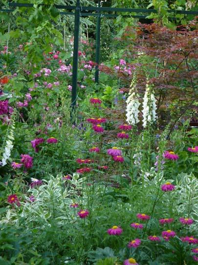 E di estate 10 consigli per il giardino d 39 estate - Il giardino d estate ...