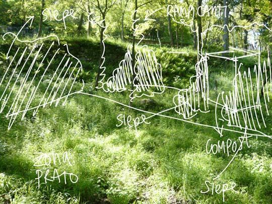 P di progetto come progettare un giardino primi passi for Foto giardini pavimentati