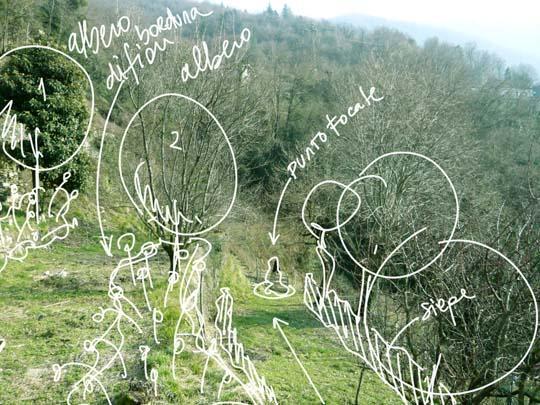 p di... progetto: come progettare un giardino, primi passi - Come Progettare Un Giardino Rettangolare