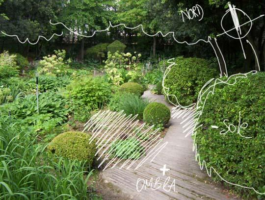 p di... progetto: come progettare un giardino, primi passi - Giardino Fiorito Disegno