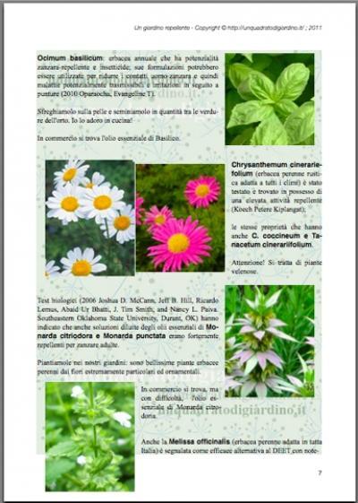 Ebook gratis un giardino repellente in potenza non attraente per le zanzare ma ricco di piante - Rimedi contro le zanzare in giardino ...