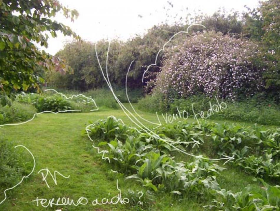 P di... Progetto: come progettare un giardino, primi passi
