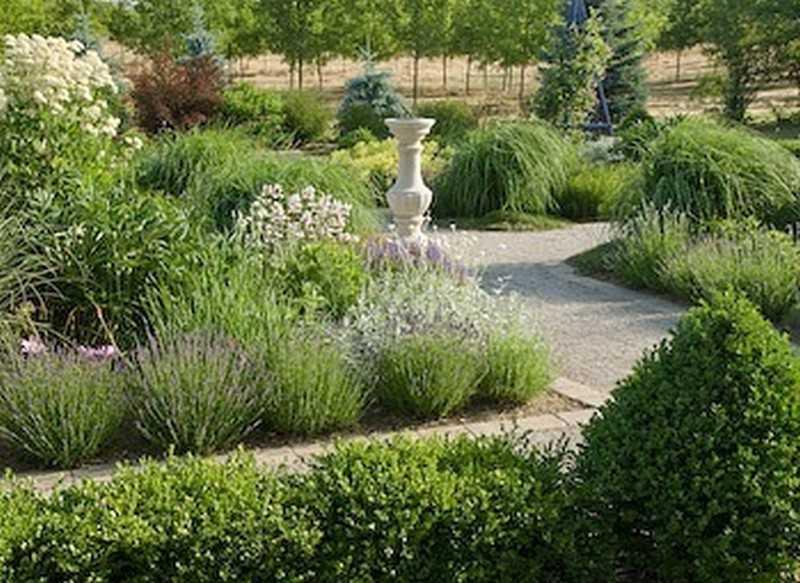 Nuovo progetto aiuole geometriche rialzate piante perenni for Piante ornamentali perenni