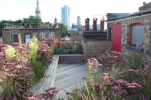 terrazzo-piante-perenni.jpg