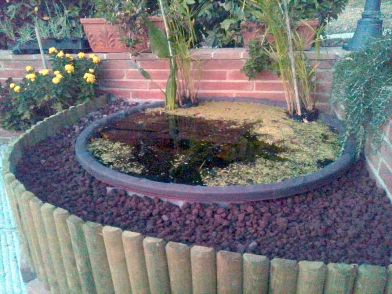 Mini pond mini laghetto in tinozza da giardino terrazzo for Laghetti da giardino in plastica